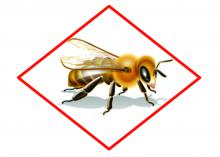 The bee hazard icon and accompanying label information are designed to provide warnings and information that will allow chemicals to be used against pests while protecting pollinators from exposure. (Graphic by Environmental Protection Agency)