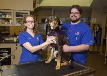 Mississippi State University College of Veterinary Medicine graduates Brittany Storey and David Eldridge are both pursuing careers as veterinary medical technicians in Memphis, Tennessee. (Photo by MSU Extension/Kevin Hudson)