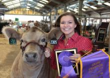 Jasper County 4-H member Lacie Winn finished her 4-H livestock project career at the Mississippi State Fair in Jackson, Mississippi. Winn placed with Drake, her European crossbred steer, in the competition on Oct. 8, 2016. (Submitted photo)