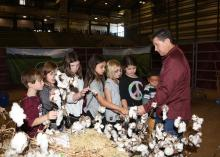 Mississippi State University Extension Service agent Dennis Reginelli explains cotton to students visiting FARMtastic in 2015. This year's agricultural event will take place Nov. 14-18 at the Mississippi Horse Park near Starkville, Mississippi. (Photo by MSU Extension Service/Kat Lawrence)