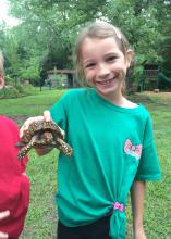 Children do not have to leave the city limits; they can explore nature in their own backyards. Eastern box turtles, which are native to Mississippi, are land dwellers and do not even need ponds to find friends who want to play. (Photo by MSU Extension Service/Evan O'Donnell)
