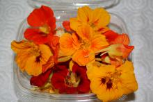 Nasturtiums shout for attention when planted in the full sun, and they thrive in less-than-perfect soil. Both the flowers and foliage are edible.