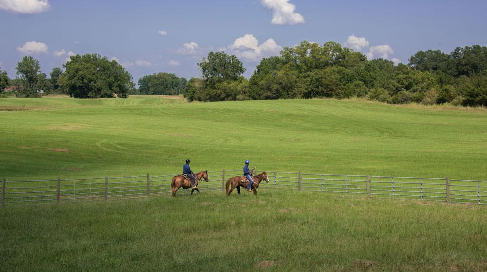 A large, green, grassy field stretches out behind two young men riding brown horses along a fence.