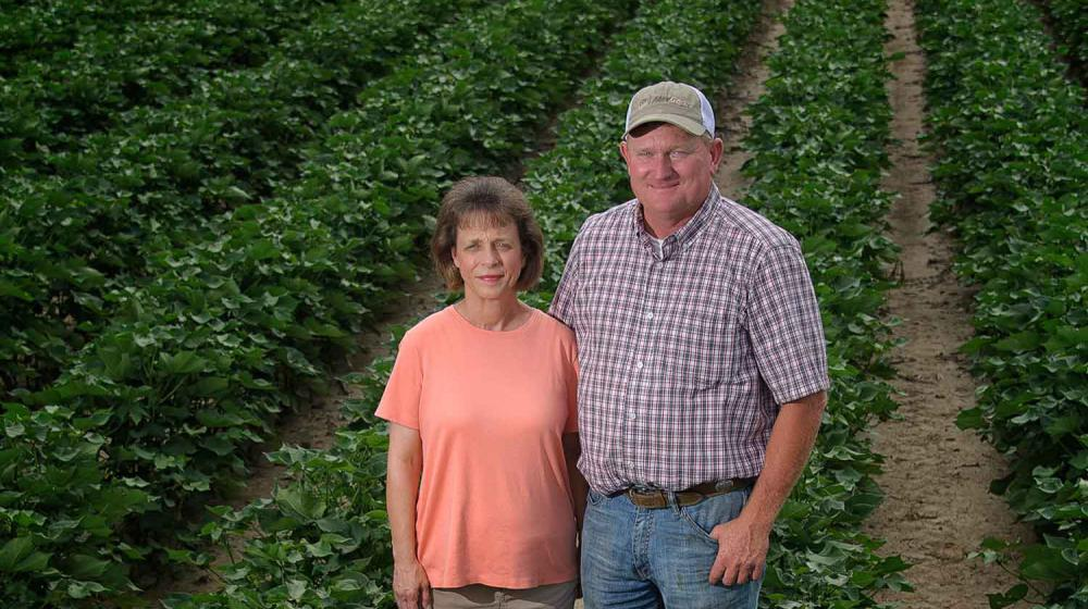A couple stands among crop rows. The woman, left, has short brown hair, a pink shirt, and khaki pants, and  a taller man wears a white and tan baseball cap, a checkerboard-striped shirt, and blue jeans.