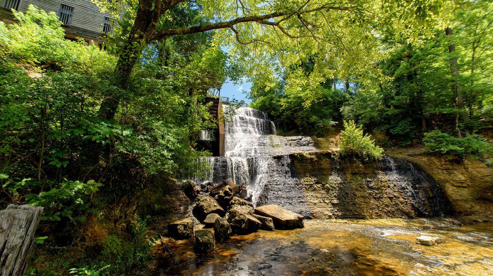 Dunn's Falls.