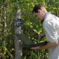 Edward Entsminger, wildlife and fisheries science graduate student, checks trail cameras to monitor wildlife presence and spreads native wildflower seeds. (Photo by Kat Lawrence)