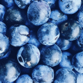 A group of blueberries.