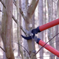 A red pruning tool cutting a branch.