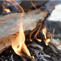 A close-up of a campfire.