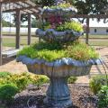 Staff members at the Mississippi State University Truck Crops Experiment Station are working to put together displays such as this flower-filled fountain for the Fall Flower & Garden Fest scheduled for Oct. 16 and 17 at the station. (Photo by MSU Ag Communications/Susan Collins-Smith)