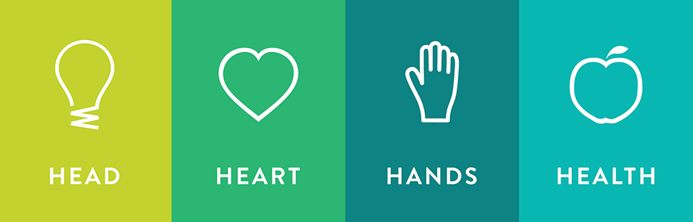 The grouped 4-H icons - head, heart, hands, health
