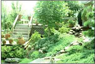 gardening on steep slopes - Garden Design Slope