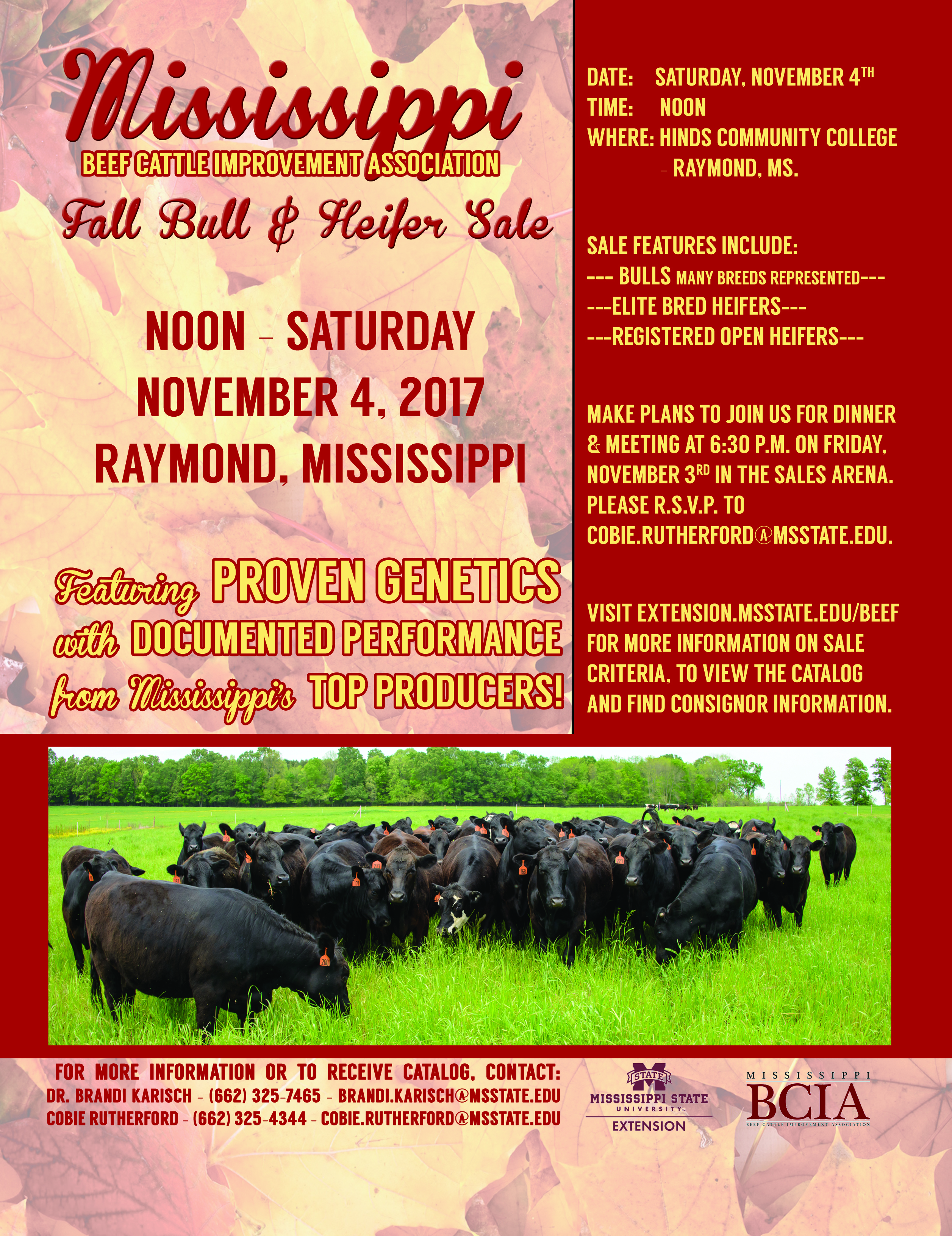 beef mississippi state university extension service