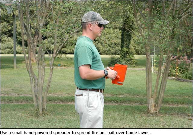 Control Fire Ants In And Around Home Vegetable Gardens Mississippi State University Extension