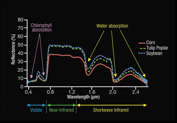 electromagnetic spectrum graph