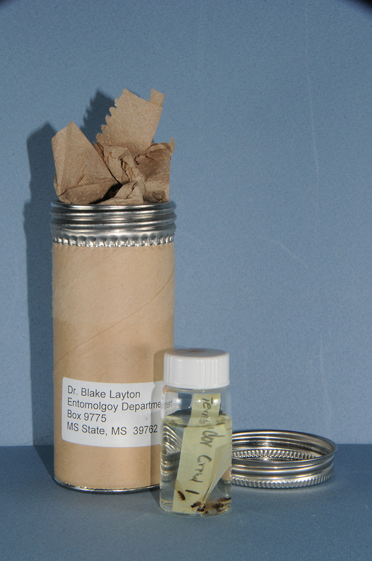 An aluminum container covered in paper towels and a leak-proof bottle is ready for mailing.