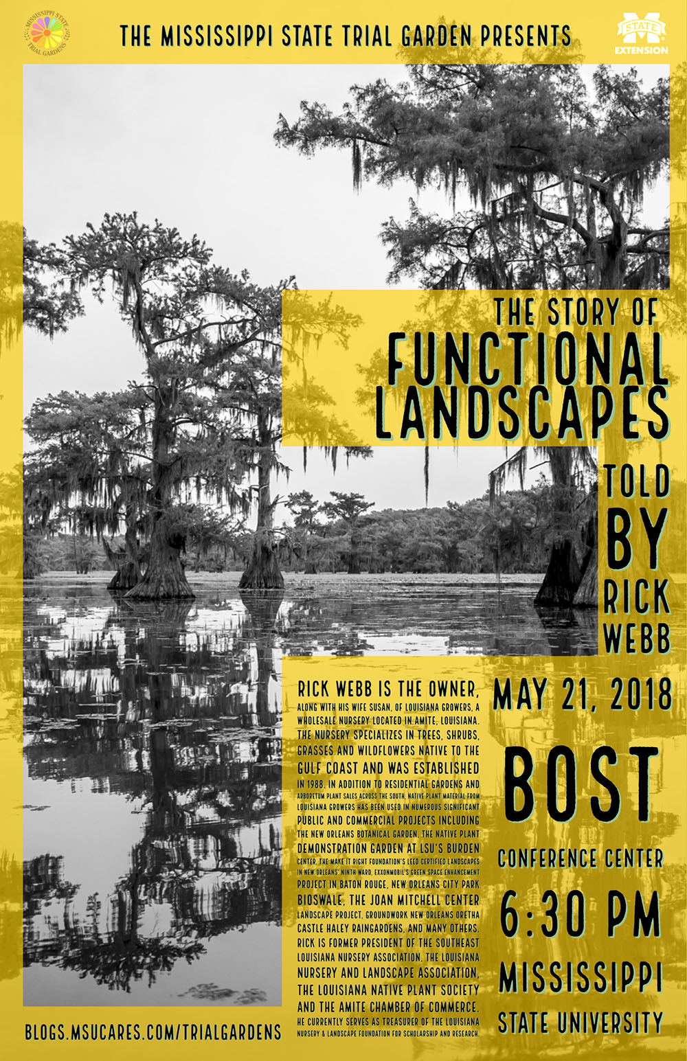 The Story of Functional Landscapes