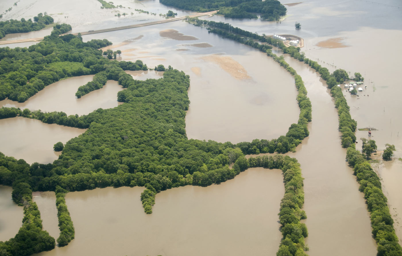 Flooding Can Stress And Damage Trees Mississippi State