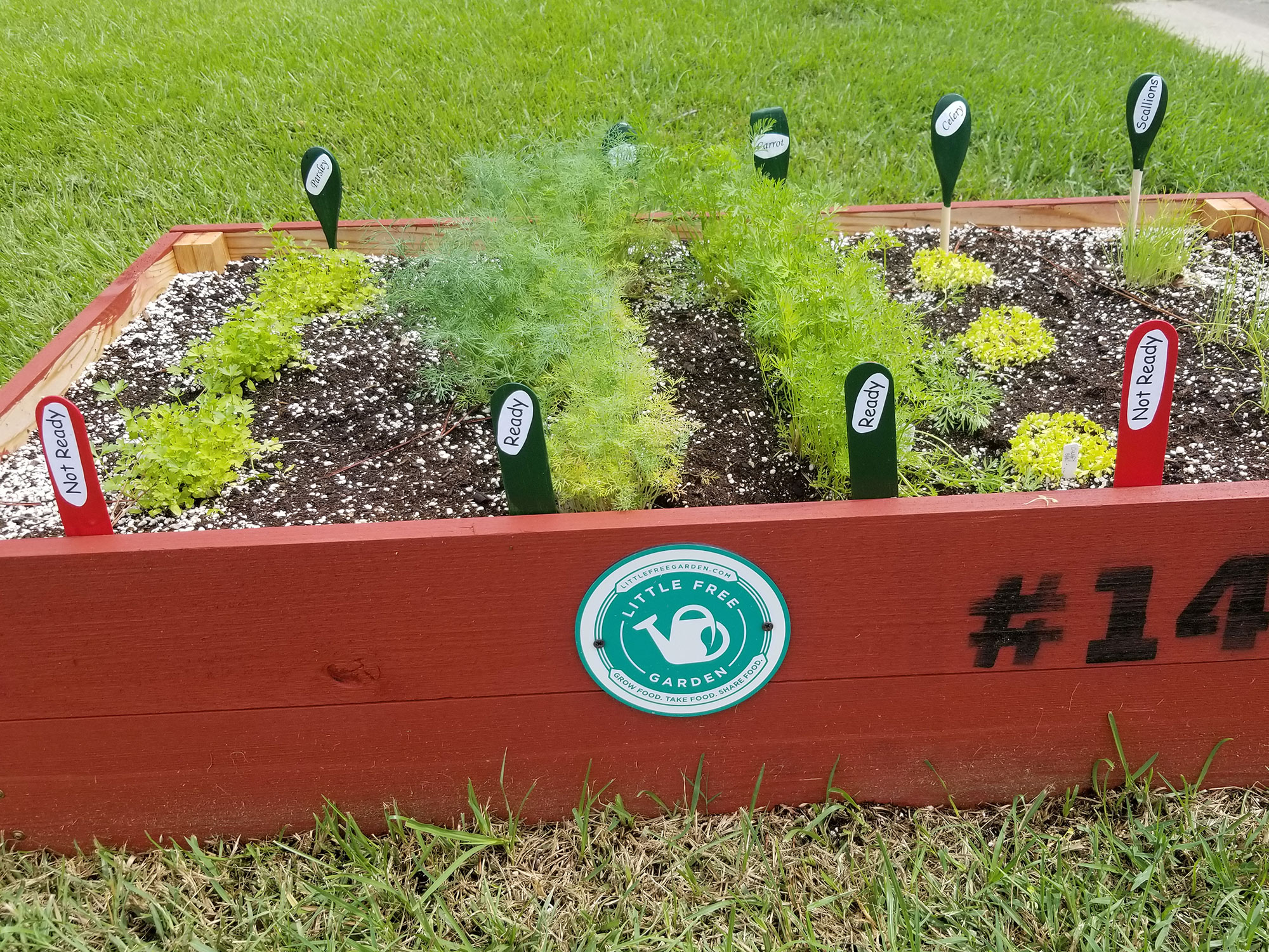 "A wooden, rectangular, red box with ""#146"" painted on the side is filled with soil and small green plants. Each plant is labeled with a green or red tag."
