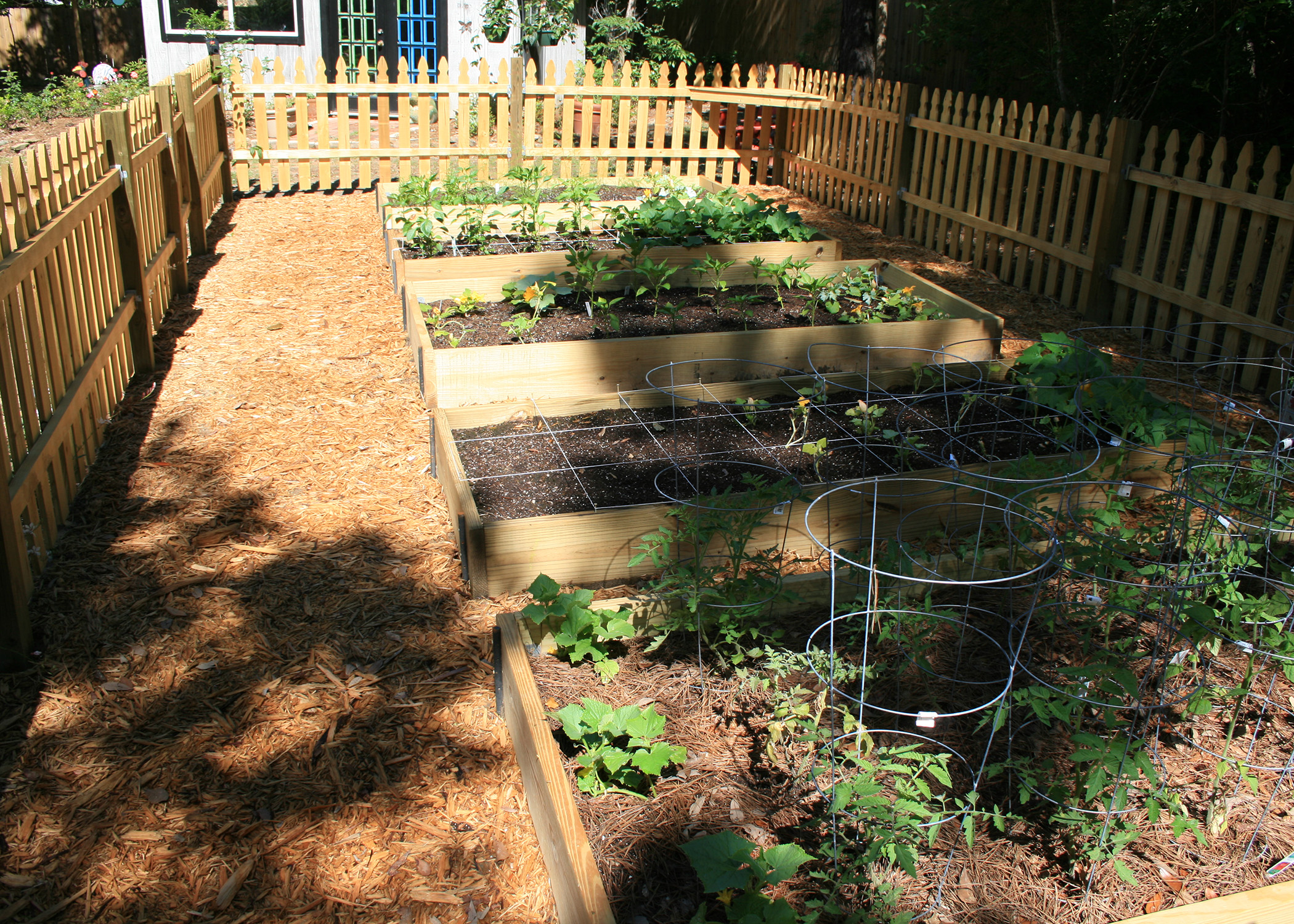 Adding Hardscape Materials Such As Treated Lumber To Build Sides Keeps  Raised Bed Gardens Looking