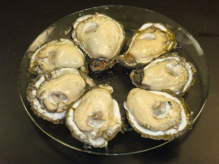 Eastern oysters on the half-shell.