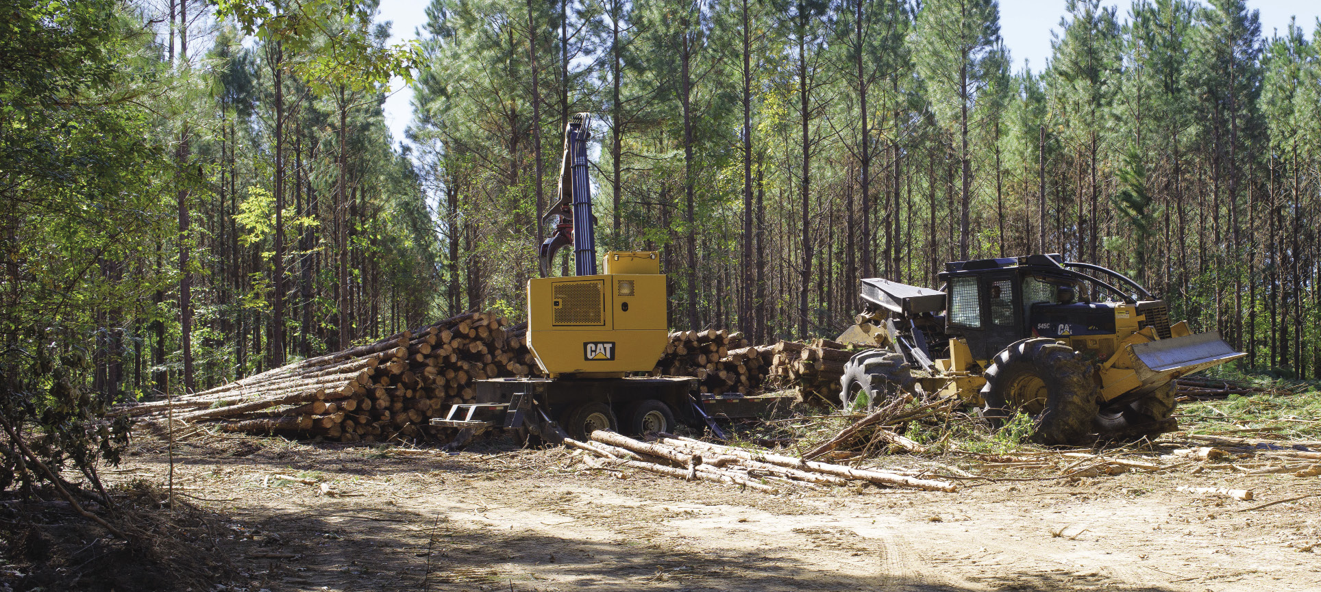 logging operation with equipment and stacked logs.