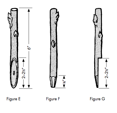 This drawing shows 3 ways to graft described in the text for Figure E, F, and G.