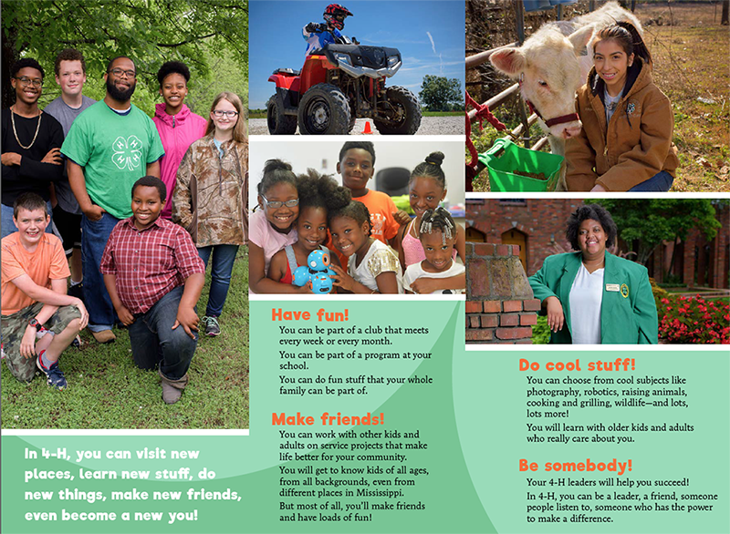 4-H members pose for the camera, ride an atv, 4-H member showing her award winning calf.