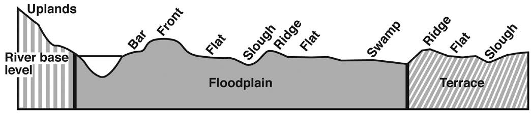 This is a diagram of cross-section of stream valley showing minor topographic positions within the floodplain.