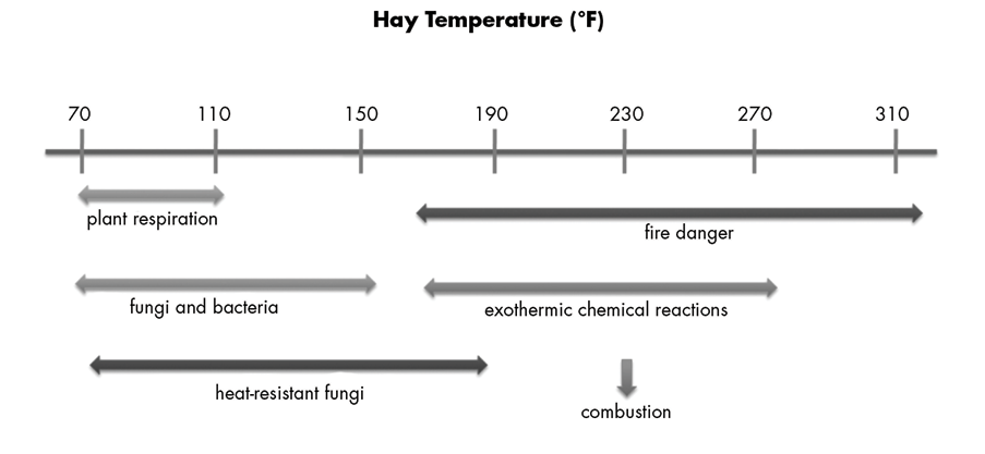 Diagram of hay temperature in fahrenheit on a number line ranging from 70 degrees on the left, lower end to 310 degrees on the right, upper end. Below lists what happens during each temperature range. From 70 degrees to 110 degrees, there is plant respiration. From 70 degrees to 150 degrees, there is fungi and bacteria. From 70 degrees to 190 degrees, there is growth in heat-resistant bacteria. From 150 degrees to 310 degrees. there is danger of fire and combution. From 150 degrees to 270 degrees, there are exothermic chemical reactions taking place.