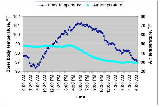 Steer body temperature measured every 15 minutes during a warm day.