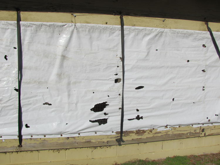 Small holes in white cover on a poultry farm house which is minor rodent damage.