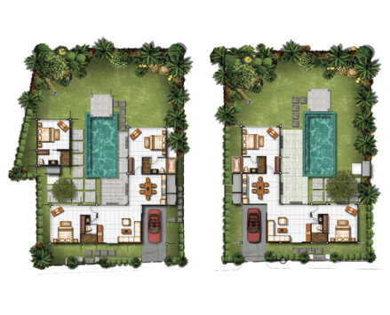 A homesite landscape illustration showing where different palm trees should be placed.
