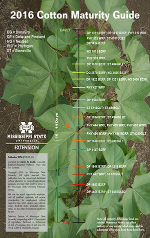 an image of the 2016 cotton maturity guide.