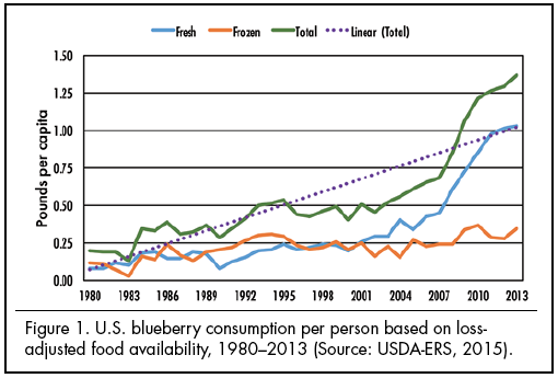 Figure 1. U.S. blueberry consumption per person based on loss-adjusted food availability, 1980–2013 (Source: USDA-ERS, 2015).
