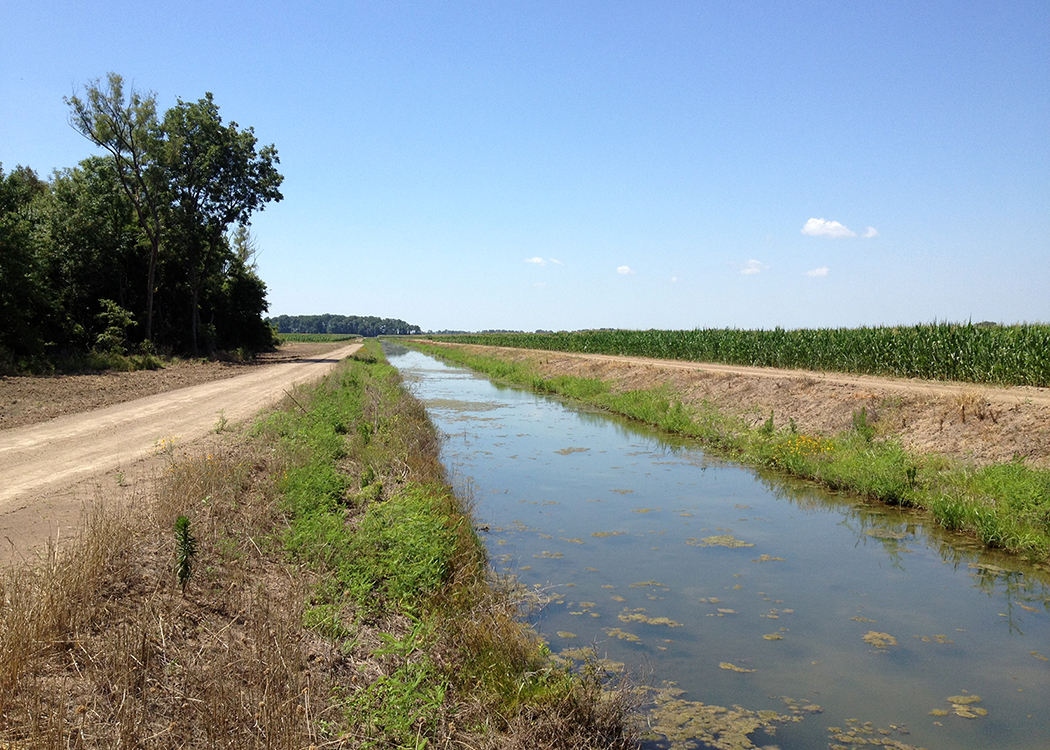 Full tailwater recovery ditch in the Mississippi Delta.