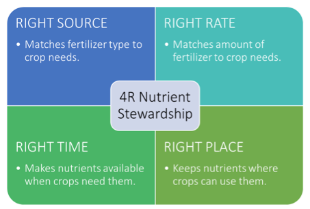 The 4R Nutrient Stewardship principles.