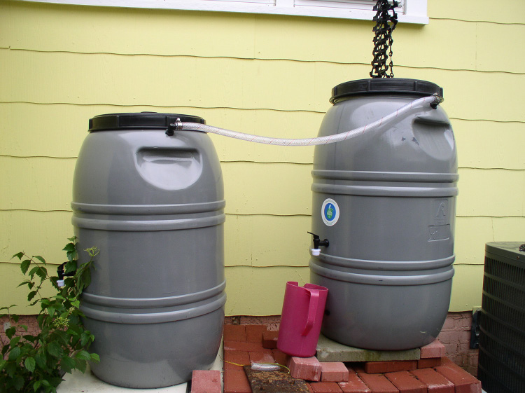 Two rain barrels on a sturdy base of bricks and concrete are linked so that, as one fills, any overflow goes into the other container.