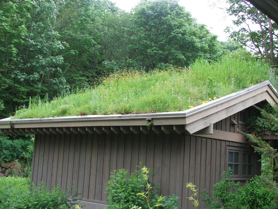 A brown building with a green roof