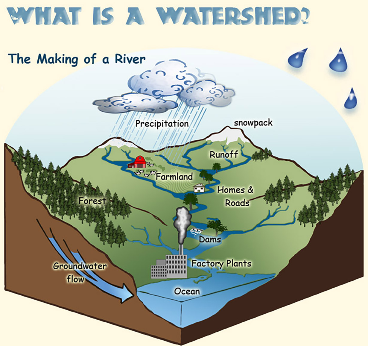 Diagram showing the watershed process.