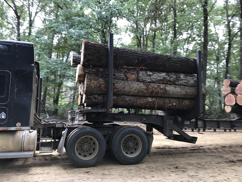 Truck carrying logs.