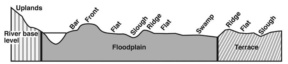 Various topographic regions of a floodplain, including bars, fronts, flats, sloughs, swamps, and ridges.