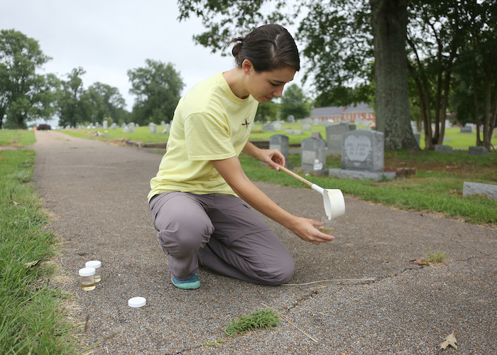 A young woman kneeling on a road in a cemetery pouring water into a clear cup.