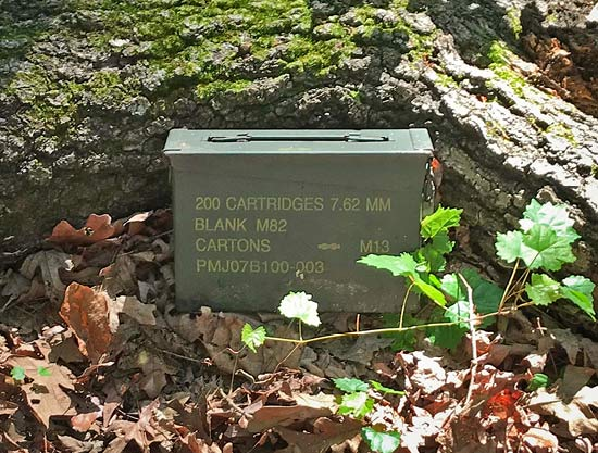 A metal box sitting in leaves in front of a large tree log on the ground.