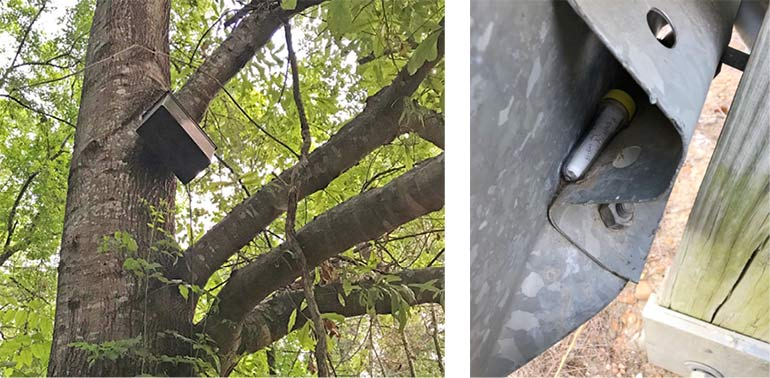 A metal box in the branches of a tree (left). A small clear tube (geocache) tucked into the back of a metal sign (right).