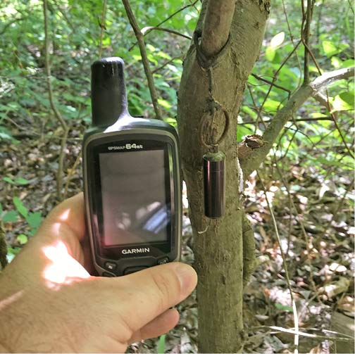 Hand holding a GPS device in front of a geocache hanging from a tree branch.