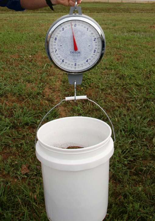 Image of step 6, weighing a bucket with a weight gauge