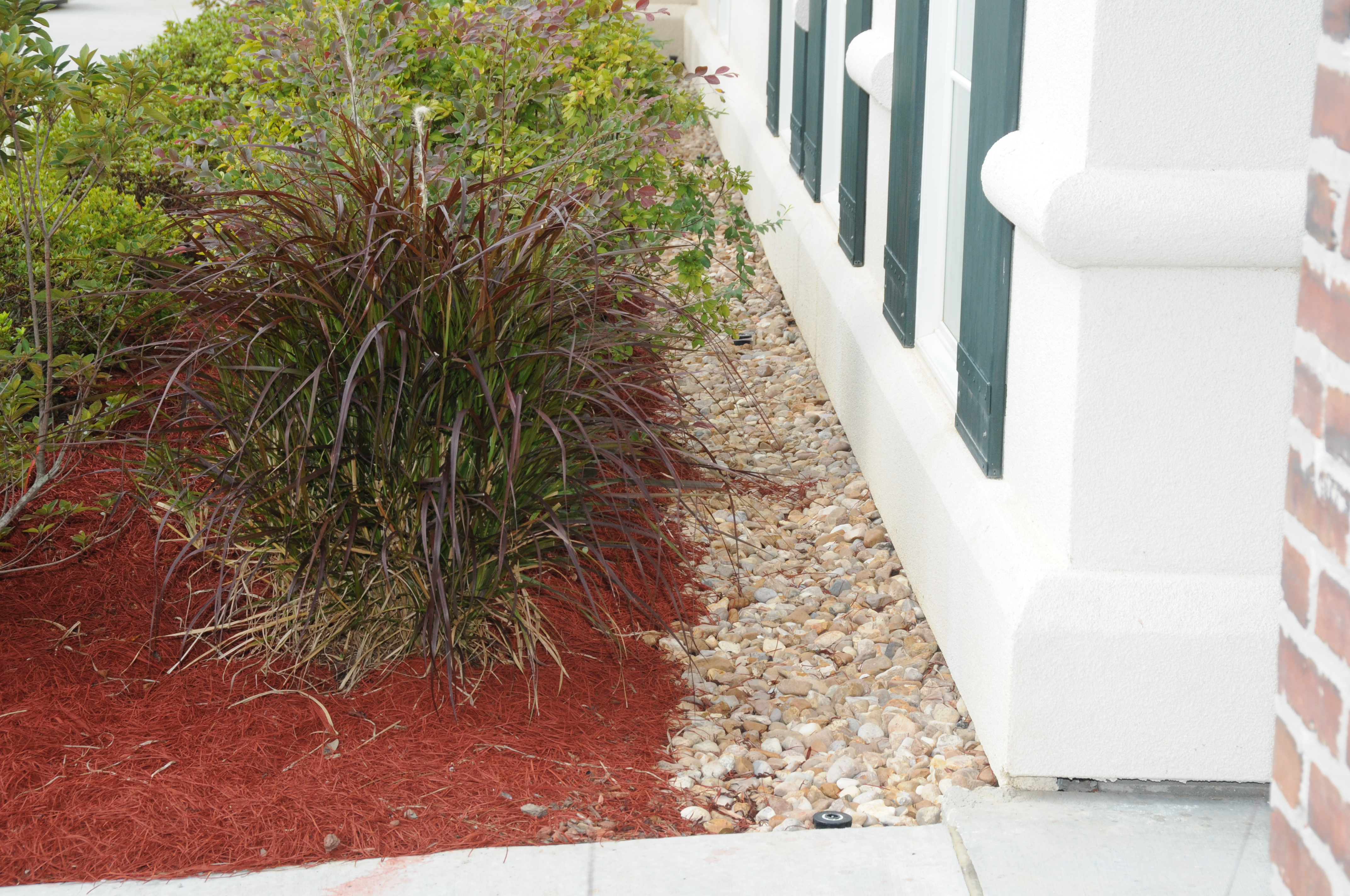 Maintaining a narrow, mulch-free strip along the foundation of a building helps reduce risks of termite infestation.
