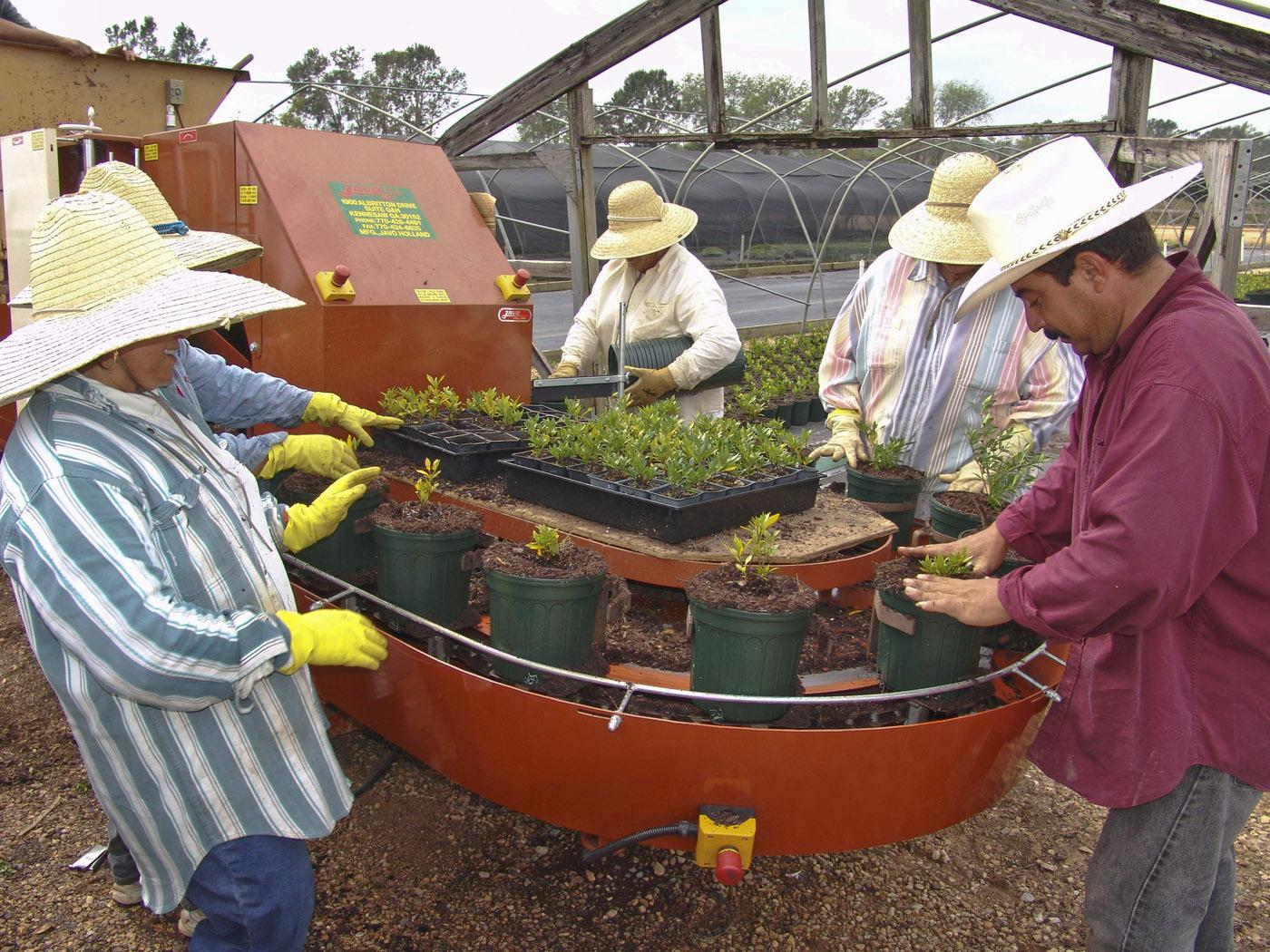 Workers at Rocky Creek Nursery in Lucedale use a machine to fill pots. The technology prevents them from having to stoop down or lift heavy pots and plant materials. (Photo by MSU's Coastal Research and Extension Center/Scott Langlois)