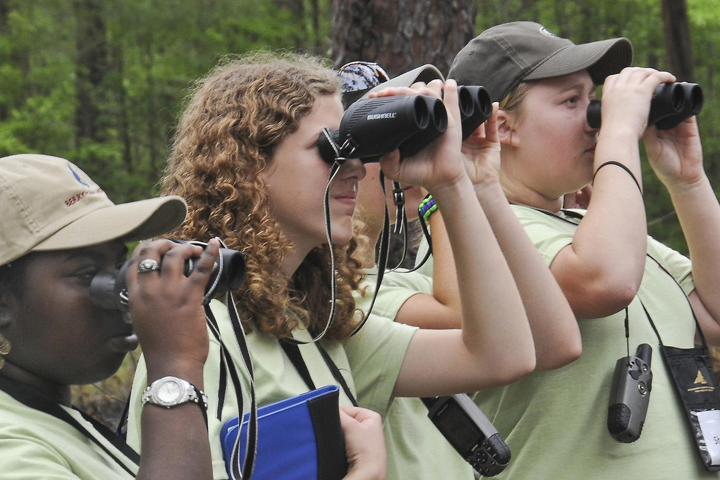 Alexis Webber, Molly Kate Chamblee, and Shaina Keene (top, from left) look for an endangered red-cockaded woodpecker at the Noxubee National Wildlife Refuge.